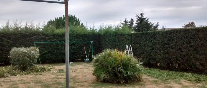 Rochefort Bois